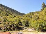 Berglandschap Ainos - Kefalonia - Foto 161 - Foto van De Griekse Gids