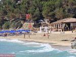 Makris Gialos-strand Lassi - Kefalonia - Foto 292